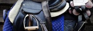 Matériel et équipement de cheval